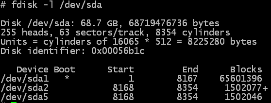Image showing output of fdisk command, reporting the size incorrectly